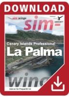 La Palmqa V4 professional