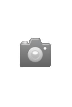 Los Angeles 747 Lufthansa