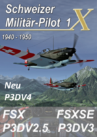 Schweizer Militär Pilot 1